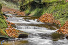 Autumn at Fall Creek Gorge (Kenneth Keifer) Tags: colors creek fallcreek fallcreekgorge foliage indiana leaves moss october stream thepotholes warrencounty waterfall autumn blurred brook canyon cascade cascading cataract chasm cliff colorful erosion flowing gorge longexposure midwest nature potholes preserve ravine rock rural sandstone scenic splash splashing stone swirls tiered tiers whitewater