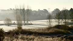 Frosty Golf course (davidheath01) Tags: soe landscapephotography dslr colour color nikond5100 nikon golf garden view window frost winter christmas pond water tee tree green snow club caddy clubs london essex