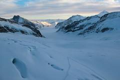 Jungfraufirn als oberer Teil des grossen Aletschgletscher ( Gletscher glacier ghiacciaio  gletsjer ) in den Walliser Alpen - Alps unterhalb dem Jungfraujoch im Kanton Wallis - Valais der Schweiz (chrchr_75) Tags: albumzzz201612dezember christoph hurni chriguhurni chrchr75 chriguhurnibluemailch dezember 2016 grosser aletschgletscher gletscher glacier ghiacciaio  gletsjer kantonwallis kantonvalais wallis valais albumgletscherimkantonwallis alpen alps schweiz suisse switzerland svizzera suissa swiss
