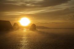 IMG_0429 (Martin P Perry) Tags: freshwater bay freshwaterbay sea coast sunrise dawn daybreak clouds