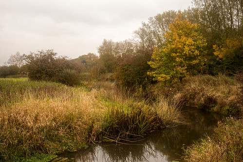 Cherwell in autumn