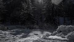 choisir son chemin (christophebiget) Tags: premièreneige montagne paysages