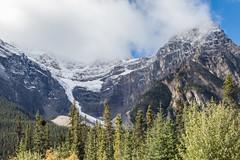 K56A7398 (paulaf55) Tags: canada canadianrockies peytolake