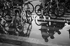 Ready to ride (Deckdeck) Tags: tourofthefireflies fireflybrigade ridevsclimatechange wwf bikeadvocacy shadows reflections bikes nikonpro nikon