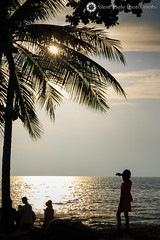 Jomtien Beach - Thailand (Silent Eagle  Photography) Tags: sep silent eagle photography silenteaglephotography canon canoneos5dmarkiii thailand seascape sunset portrait mar beach tree coconut sun sky sea outdoor silenteagle09 silhouettes ef24105mm iso50 110