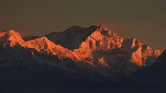 The Queen wakes up.... !!! (Lopamudra !) Tags: lopamudra lopamudrabarman lopa kanchendzongha kanchenzonga kanchanjonga landscape kanchendzonga kabru kanchanjangha kanchanjongha kanchenzongha sunrise sunshine morning dawn twilight darjeeling himalaya highaltitude himalayas sleepingbuddha golden light snowscape snow ice icy colour color colours cold colourful mountain mountains india peak peace peaks picturesque picture nature majestic queen westbengal