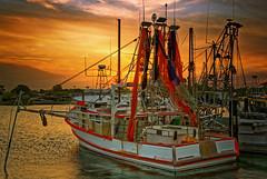 (maldonnelly) Tags: moored fishing trawler yamba nsw clarence river sunset