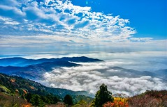 Sea of Clouds on Mt. Tsukuba (Changer4Ever) Tags: nikon d7200 nikkor seaofclouds cloud clouds sun sunlight sunshine light bright tree trees leaf leaves autumn fall season scene scenic landscape sky mountain mountains outdoor color colorful