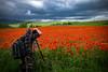 Dans le grand Rouge (Clydomatic) Tags: champ coquelicots ciel photographie photographe paysage rouge