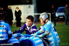 Brest Vs Plouzané (68) (richardcyrille) Tags: buc brest bretagne rugby sport finistére plabennec edr extérieur