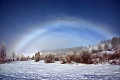 CRYSTALS IN THE SKY (Aspenbreeze) Tags: fogbow fog winter snow frost ice crystals grandtetonnationalpark tetons nature outdoors wintery sky trees rural wyominglandscape bevzuerlein aspenbreeze moonandbackphotography
