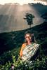 IMG_8873 - Tea Picker (Stuart Butler / Oceansurf) Tags: portrait tourism asia tea srilanka hillcountry haputale teapicker feb2014 dambatenneteaestate