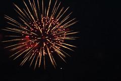 Firework3 (dimatteoeleonora) Tags: light sunset red summer black flower love nature night canon lights italia fireworks natura firework nights palermo fuochi santarosalia dartificio pirotechnics flickrdiamond canoneos1200d eledimatteophotography