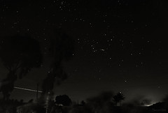 Orion Rising (swethambari iyer) Tags: longexposure nightphotography sky india night clouds stars star nightscape bangalore astrophotography orion astronomy nandi karnataka constellation startrails nandihills mybangalore mybengaluru