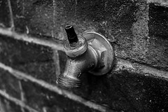 Lombard Street (twinsfan7777) Tags: sanfrancisco road street urban white black detail macro brick water canon faucet simple lombard urbanphotography