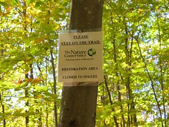 IMG_0299 (vtbohemian) Tags: fall leaves vermont hiking fallfoliage grandview snakemountain addisoncounty