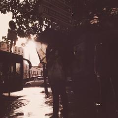 06-10-15 Soleil mouillé (marisan67) Tags: street paris detail photo photographie streetphoto 365 rue pola détail iphone cliché 5s 2015 instantané 365project iphonography iphonegraphy iphonographer polaphone iphonographie iphoneographie iphone5s