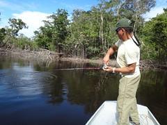 Amazonia 2012 (14)