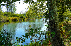 P1000616.edit1 (tcelli) Tags: landscape canoeist tranquil panasoniczs3