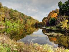 Fall Picnic (Paul D. McCarthy) Tags: autumn ohio fall colors belmont oh barkcamp