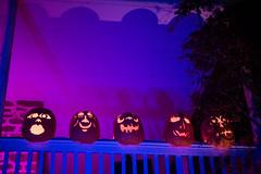 KMM_3009 (K_Marsh) Tags: jackolantern pumpkins westchestercounty crotononhudson thegreatjackolanternblaze