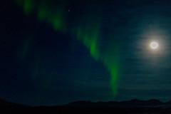 Iceland_a450_2015-79 (agoldmutt) Tags: iceland reykjavik geyser ingvellir northernlights goldencircle gullfosswaterfall