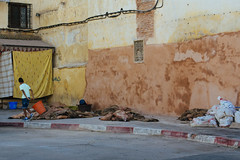 The Day After (Enea Cattaneo) Tags: travel nikon streetphotography morocco tradition mutton fes feselbali d7100