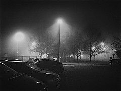 Milan in Fog (giannipaoloziliani) Tags: auto urban blackandwhite italy cars ice fog alberi night dark lights shadows milano parking ombre luci lamps nebbia notte lampioni biancoenero parcheggio iphone ghiaccio citynight urbannight citynightlife milancity