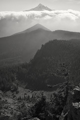 East to the Cascades (Scott Withers Photography) Tags: tannerbutte columbiarivergorge mthood oregon sonya7rii zeissloxia35mmf2