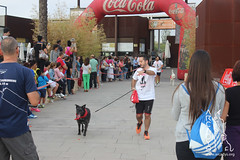 "Can-rerra Popular 2016 - Llegada y descanso tras la carrera -Arcadys.org Biopark Valencia-14 • <a style=""font-size:0.8em;"" href=""http://www.flickr.com/photos/145784091@N07/29630593814/"" target=""_blank"">View on Flickr</a>"