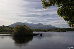 Lough Leane (Lux) Tags: samsungnx2000 samsung nx2000 fogliluca lux76 nobrainstudio trip ontheroad wild ireland eire irlanda irish land green