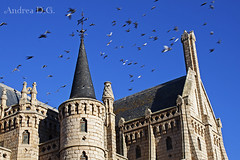 El vuelo de los pájaros (andreadg85) Tags: astorga león palacio episcopal birds