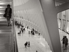The Oculus, NYC (SG Dorney) Tags: nyc ny newyorkcity manhattan lowermanhattan wtc bw theoculus oculus worldtradecentertransportationcenter