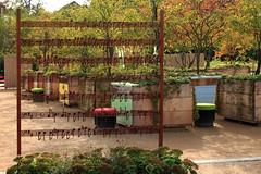Auf der Landesgartenschau (44) (Rdiger Stehn) Tags: pflanze blumen blte 2016 europa mitteleuropa deutschland germany norddeutschland schleswigholstein 2000er 2000s ostholstein eutin landesgartenschauschleswigholstein park sduferpark holsteinischeschweiz canoneos550d noten