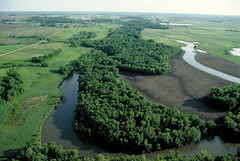Riparian forest buffers (USDAgov) Tags: agroforestry conservation forestmanagement forestry forests nationalagroforestrycenter nationalforestproductsweek nrcs