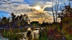 Savica, Zagreb, Croatia (Mladen Perić) Tags: jezero savica zagreb croatia hrvatska jesen sunce nature red sun sky ribolov šaran