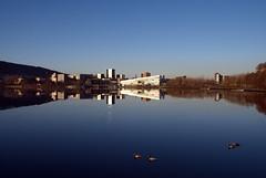 Ender -|- Ducks (erlingsi) Tags: ender ducks bergen reflectionstorelungegaardsvann europe noreg hordaland ado