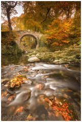 Foleys Bridge, Tollymore Forest (Chris-Ibbotson-Photography) Tags: tollymoreforestpark newcastle mournemountains cascades steppingstones hermitage waterfalls