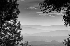 Der Blick in die Ferne (Fotos4RR) Tags: schwarzweiss schwarzweis blackwhite blackandwhite silhouette berge mountains steiermark styria österreich austria hügel hills schilcherland