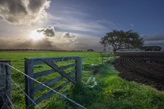 On the fence - again! (zebedee1971) Tags: landscape fence grass farmland field farm gate barbed wire plough ploughed farmer tree sun light sunlight sunset post fencepost land sky cloud cloudy rays blue green flowers flower