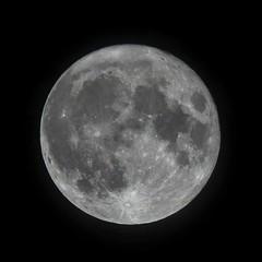 Supermoon_3309 (Rob_Leigh) Tags: supermoon moon congleton cheshire