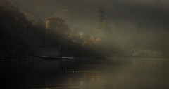 Quiet (Peter Henry Photography) Tags: morning light mist lakedistrict derwentwater cumbria lake calm