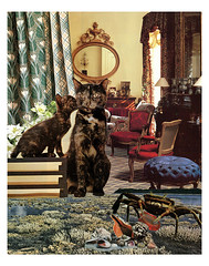 Cancer - StarCat (tjager) Tags: astrology zodiac cancer starcat livingferal cat crab watersign catlover collage art analog