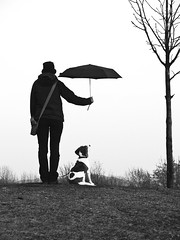 Ist es Liebe? (timpelan-photography) Tags: hund frauchen beagle herrchen regenschirm regen tierliebe liebe timpelan fotografie leipzig