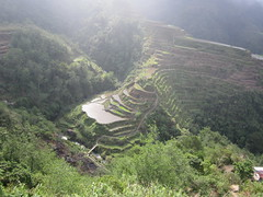 FOGGY (PINOY PHOTOGRAPHER) Tags: banaue mountain province cordillera luzon philippines asia world
