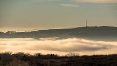 NB-13.jpg (neil.bulman) Tags: countryside longshawestate peakdistrict nature nationalpark derbyshire longshaw fog cloudinversion inversion cloud nationaltrust sheffield england unitedkingdom gb