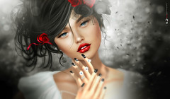 Aɴιмα ιтαlιαɴα ღ♥ღ Cυore ѕpαɢɴolo (AyE ღ Mє, му Єηяιqυє ♥ му Λят) Tags: digitalart digitalpainting digitalfantasy painting artworks portraits beauty illustrations artportrait ritratto retrato portrature dreamy vision magical emotionalart emotional love cuore heart ♥