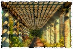 secret_squares (gerhil) Tags: travel landscape scenic garden trellis pattern square vintage polaroid photoborder outdoor serene autumn november2016 nikcolorefexpro4 geometry repetition