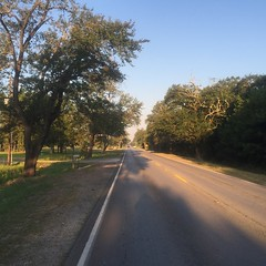 The Road Ahead. Day 119. Rt. 90 in Sulpher, LA. Lots of traffic headed into the city so I've been pushed to the grass. #theworldwalk #travel #wwtheroadahead