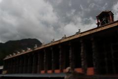 Place (Ajay Brooks) Tags: sunset green beach clouds temple gopuram thiruvannamalai greenary mandapam